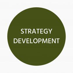 Clove Marketing Strategy Development